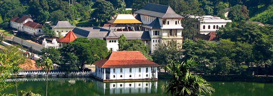 Day 3 : Full Day Udawatta Kele Sanctuary Tour ( Kandy )