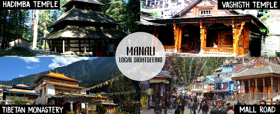 Day 5 : Manali (Manali Local)